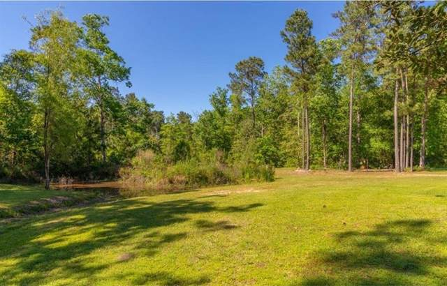 Lot 10-11 Off S Duck Creek, Cleveland, TX 77328 (MLS #33925646) :: The Home Branch