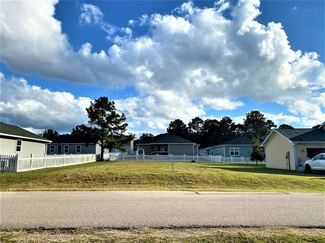 TBD Red Clover, Livingston, TX 77351 (MLS #3393939) :: The Home Branch