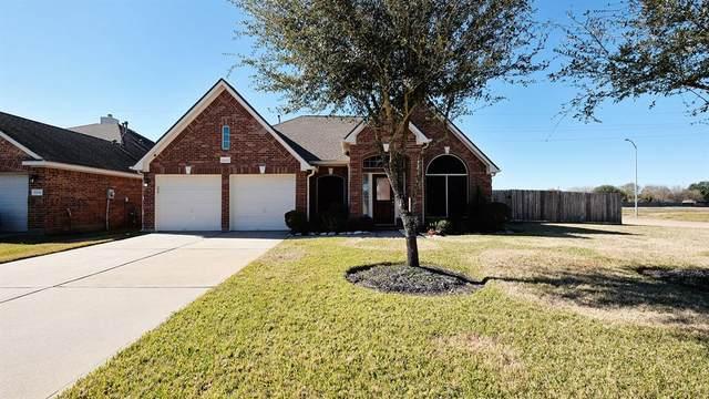 11202 Burmese Lane, Sugar Land, TX 77478 (MLS #3396053) :: Ellison Real Estate Team
