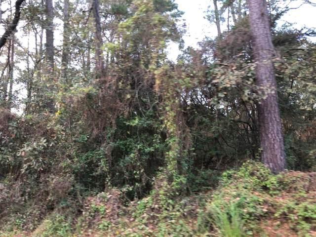 16953 Glenheath, Montgomery, TX 77316 (MLS #33980446) :: Phyllis Foster Real Estate