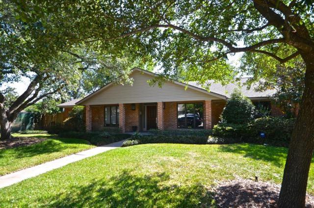 5231 Contour Place, Houston, TX 77096 (MLS #33988145) :: Magnolia Realty