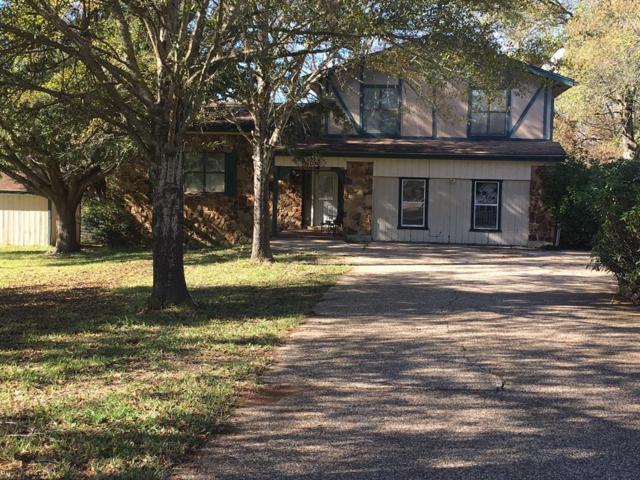 581 Hanging Tree Trail, Point Blank, TX 77364 (MLS #34022723) :: NewHomePrograms.com LLC