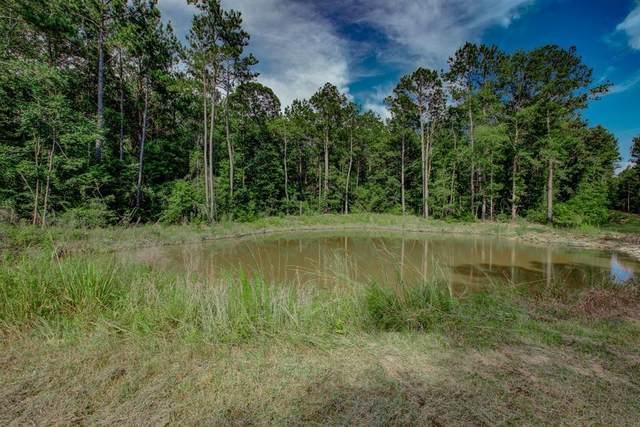 TBD Deep Forest Trail, Navasota, TX 77868 (MLS #3402316) :: Homemax Properties