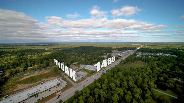 15448 Pin Oak Drive, Conroe, TX 77384 (MLS #34068528) :: Lerner Realty Solutions