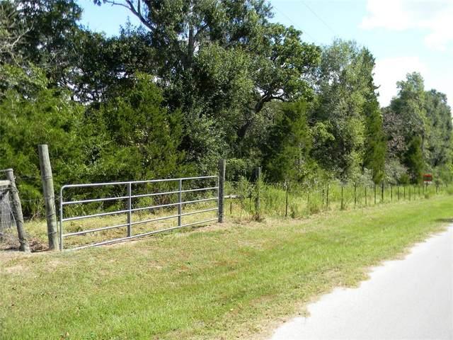 00 Chambers Road, Hempstead, TX 77445 (MLS #34096899) :: Michele Harmon Team