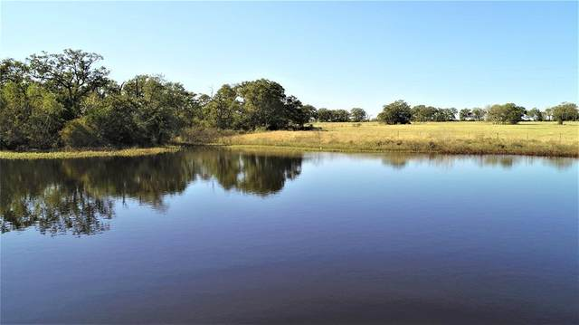 3777 County Road 406, Somerville, TX 77879 (MLS #34138632) :: Texas Home Shop Realty