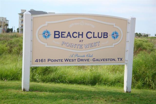 4119 Sandhill Crane Way, Galveston, TX 77554 (MLS #34140475) :: Keller Williams Realty