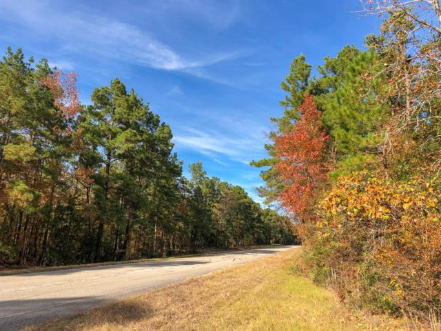 172 Ac Waterwood Pkwy, Huntsville, TX 77320 (MLS #34145675) :: The SOLD by George Team