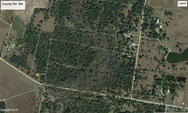 00 County Rd 394, El Campo, TX 77437 (MLS #34204765) :: Green Residential