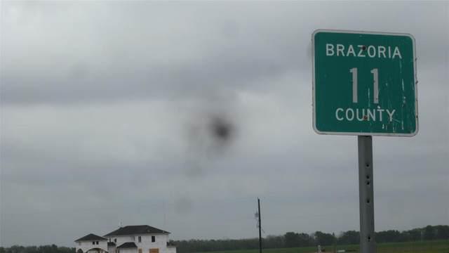 0 Highway 36, Damon, TX 77430 (MLS #34227232) :: Michele Harmon Team