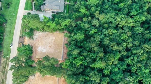 11021 Shadow View Drive, Conroe, TX 77304 (MLS #34316142) :: Ellison Real Estate Team