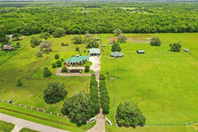 2410 Majestic Oaks Court, Rosharon, TX 77583 (MLS #34326537) :: The Queen Team