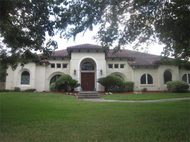 6719 Rustling Oaks Drive, Rosenberg, TX 77469 (MLS #34346384) :: Giorgi Real Estate Group