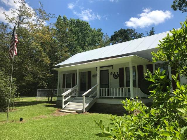 000 Fm 256 West, Woodville, TX 75979 (MLS #34380435) :: Connect Realty