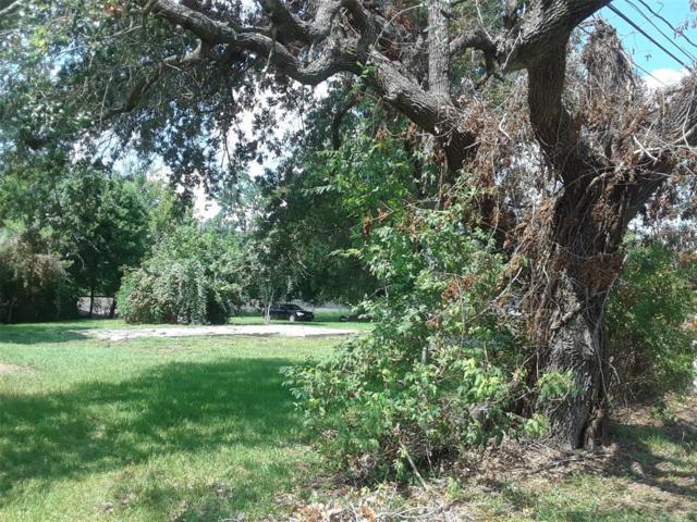 16839 Highway 6, Santa Fe, TX 77517 (MLS #34395236) :: The SOLD by George Team