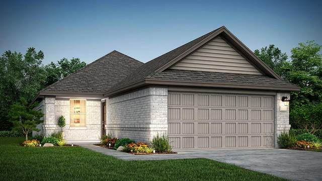 18443 Running Shadow Court, Hockley, TX 77447 (MLS #34397402) :: Giorgi Real Estate Group