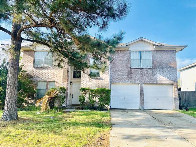 17522 Coventry Squire Drive, Houston, TX 77084 (#34522723) :: ORO Realty