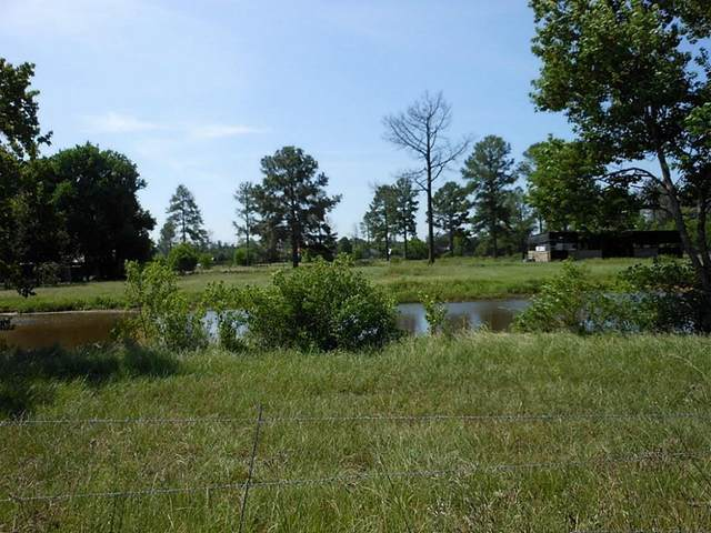 32629 Decker Prairie Road, Magnolia, TX 77355 (MLS #34545593) :: The Queen Team