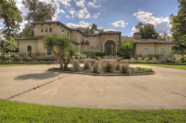 11246 Majestic Drive, Montgomery, TX 77316 (MLS #34547742) :: Christy Buck Team