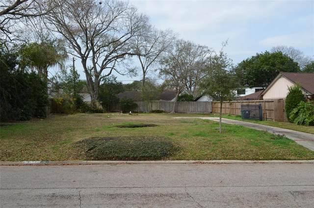 10114 Willowgrove Drive, Houston, TX 77035 (MLS #34640928) :: Connect Realty