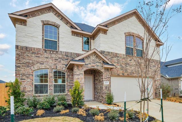 223 Sintra Lake Way, Rosenberg, TX 77469 (MLS #34656626) :: Team Sansone