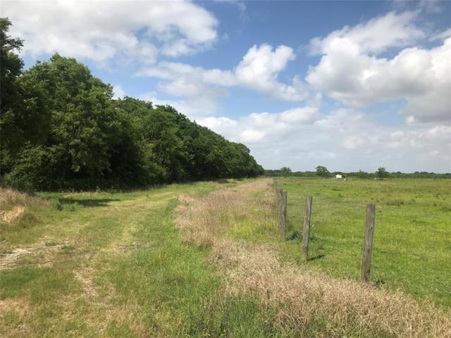 0 County Road 184, Alvin, TX 77511 (MLS #34703409) :: Giorgi Real Estate Group