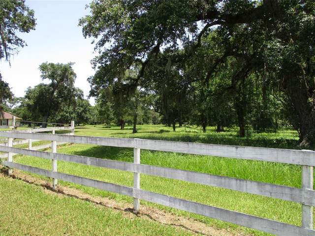 000 County Road 684C, Sweeny, TX 77480 (MLS #34707073) :: The Wendy Sherman Team