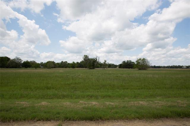 119 Trailblazer, Angleton, TX 77515 (MLS #34827185) :: The Bly Team