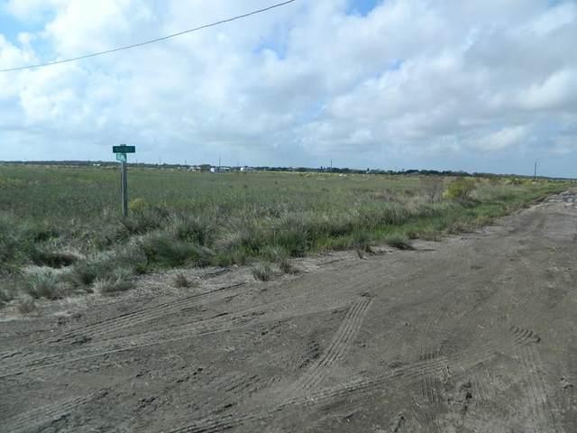 690 W Peregrine, Sargent, TX 77414 (MLS #3484300) :: Keller Williams Realty