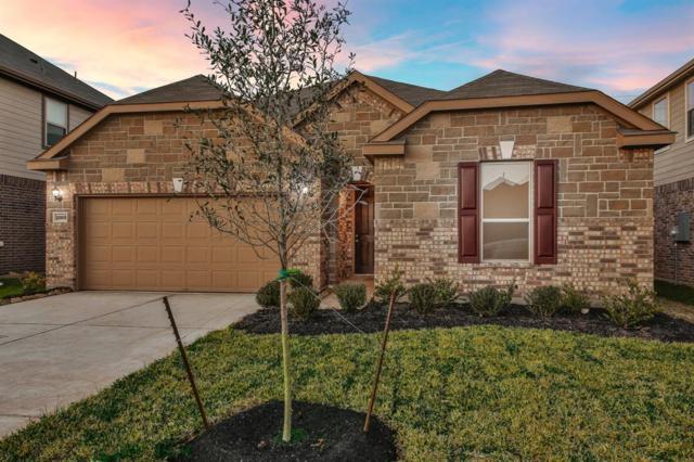22618 Williams Oak Lane, Richmond, TX 77469 (MLS #34884210) :: Fairwater Westmont Real Estate