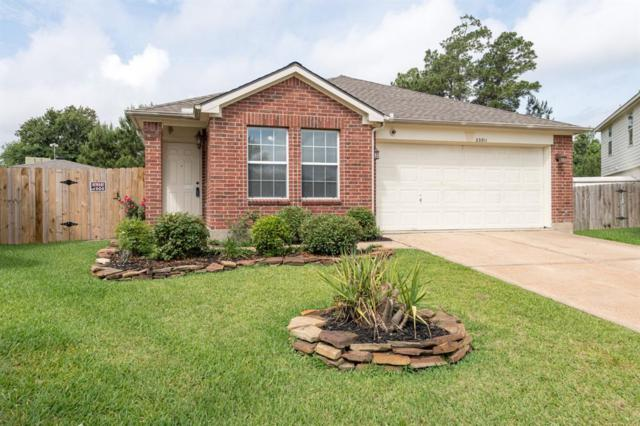 23311 Cape Cottage Court, Spring, TX 77373 (MLS #34987266) :: Giorgi Real Estate Group