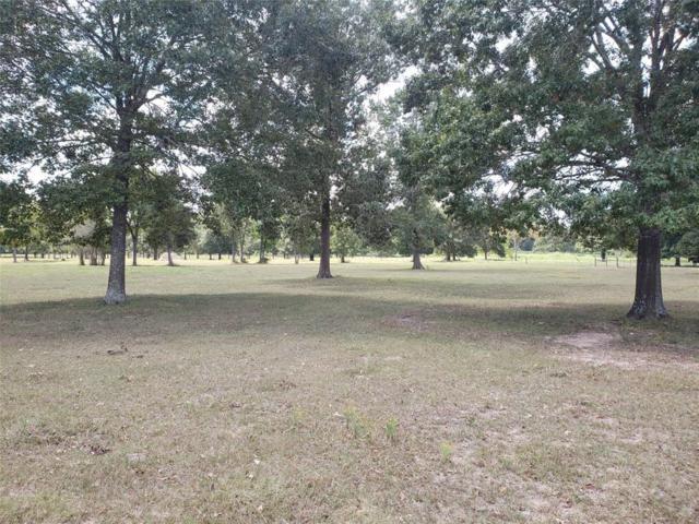 18859 Kinkaid Rd W, Montgomery, TX 77316 (MLS #35038254) :: The Jill Smith Team