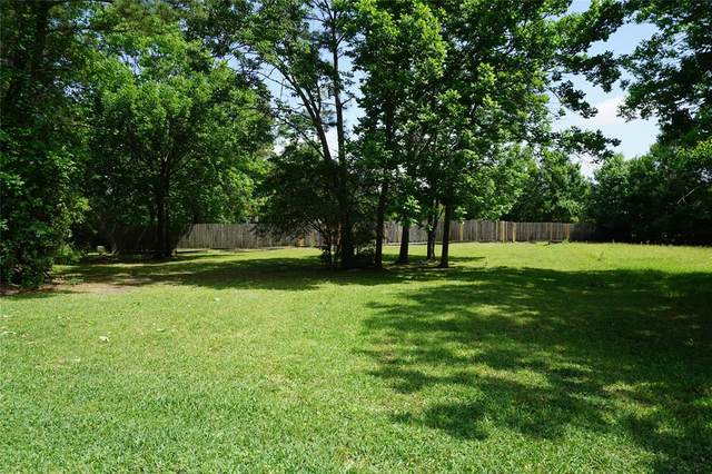 12509 Pebble View Drive, Conroe, TX 77304 (MLS #3511929) :: Michele Harmon Team