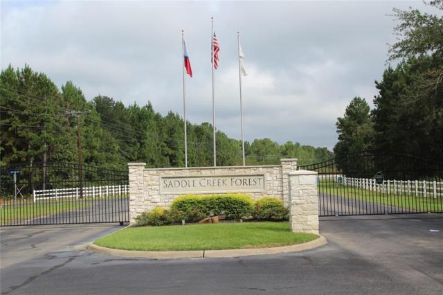 17907 N Equestrian Drive, Waller, TX 77484 (MLS #35149684) :: Texas Home Shop Realty