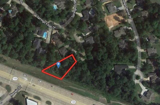 161 Springs Edge Drive, Conroe, TX 77356 (MLS #35216023) :: Johnson Elite Group