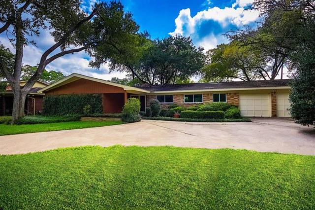 10007 Willowgrove Drive, Houston, TX 77035 (MLS #35227323) :: The Jill Smith Team