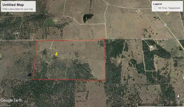 6750 Three Mile Road, Flatonia, TX 78941 (MLS #35366475) :: Lerner Realty Solutions