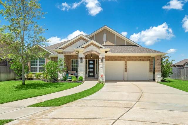 2204 Rocky Shores Lane, Pearland, TX 77089 (MLS #35418551) :: The SOLD by George Team