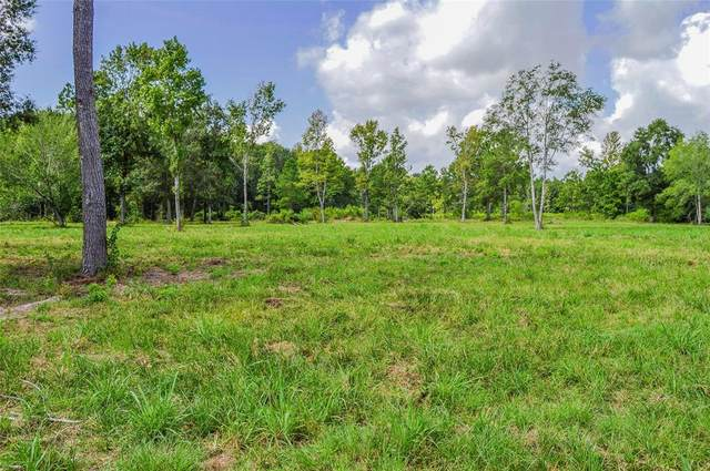 5 AC Hwy 321, Cleveland, TX 77327 (MLS #35444979) :: The SOLD by George Team