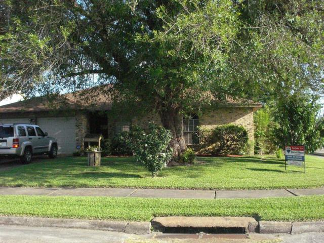15026 Peachmeadow Lane, Channelview, TX 77530 (MLS #35499625) :: Giorgi Real Estate Group