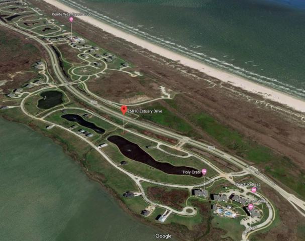 26810 Estuary Drive, Galveston, TX 77554 (MLS #35531826) :: Magnolia Realty