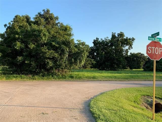 118 Horse Shoe Trail, Angleton, TX 77515 (MLS #35550759) :: Green Residential