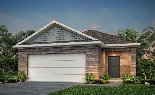 25546 Northpark Spruce Drive, Porter, TX 77365 (MLS #35553648) :: Homemax Properties