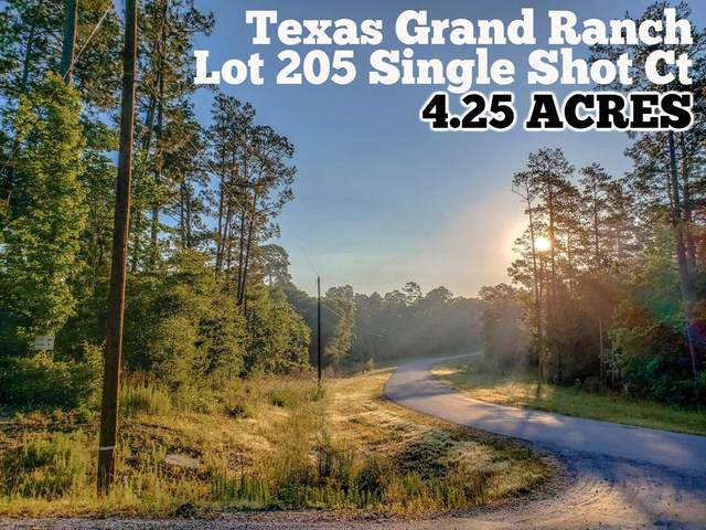 Lot 205 Single Shot Court, Huntsville, TX 77340 (MLS #355749) :: Ellison Real Estate Team