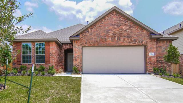 724 Red Elm Lane, Conroe, TX 77304 (MLS #35611553) :: Christy Buck Team