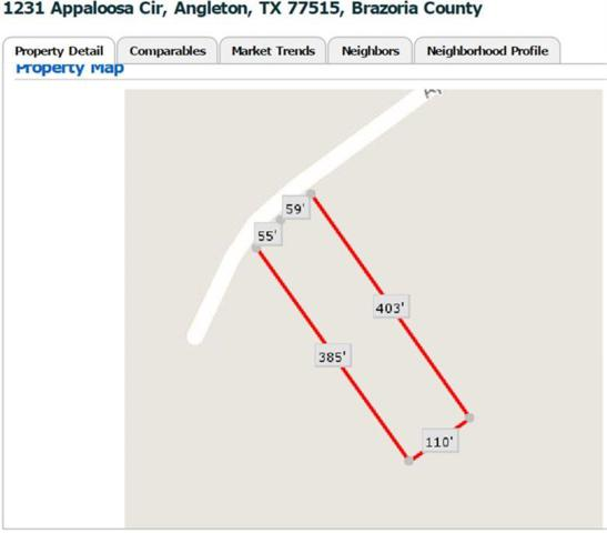 1231 Appaloosa Circle, Angleton, TX 77515 (MLS #35636913) :: Giorgi Real Estate Group