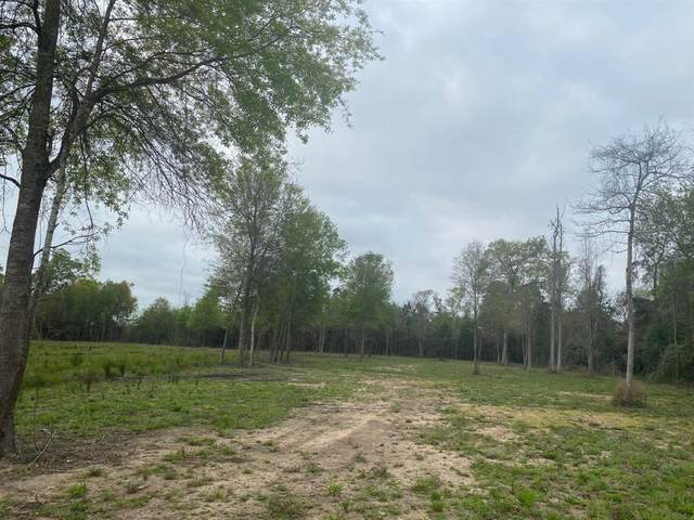 8 Acre County Road 2216, Cleveland, TX 77327 (MLS #35686662) :: The Property Guys