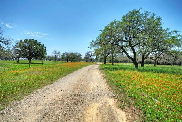 1687 Lincoln Smith Road, Round Mountain, TX 78663 (MLS #35732495) :: The Queen Team
