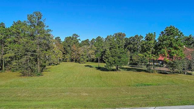 1569 Emerald Lakes Drive, Willis, TX 77378 (MLS #35796191) :: Texas Home Shop Realty