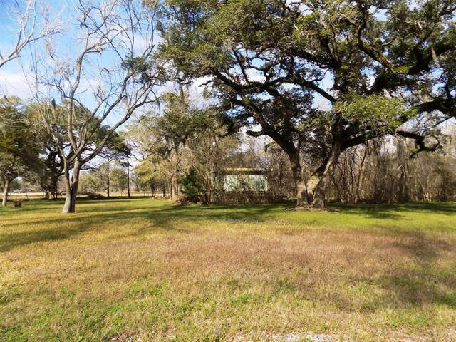 7-9 County Road 161 Shilo Loop, Cedar Lane, TX 77414 (MLS #35816580) :: Green Residential